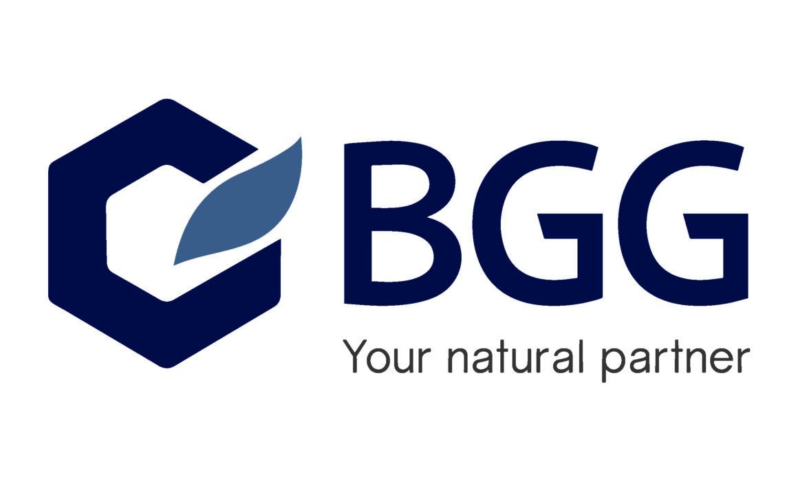 BGG logo New 2017